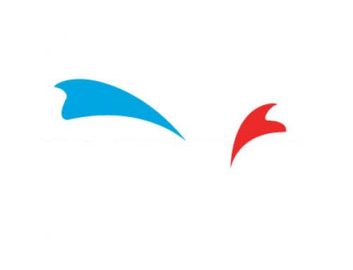 Logo Tahmin Oyunu, Marka Bulmaca