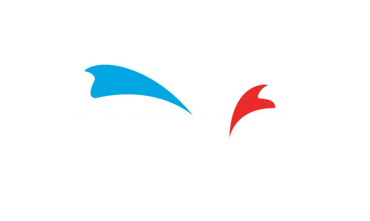 Logo tahmin oyunu
