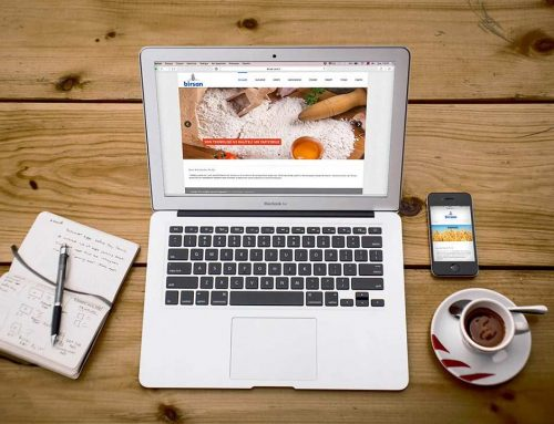 Birsan Gıda Responsive Web Design