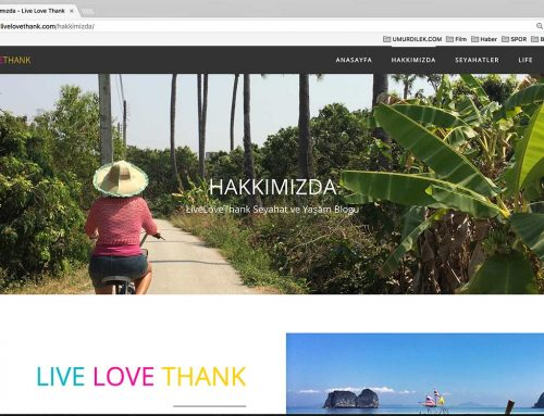 LiveLoveThank Blog Web Design